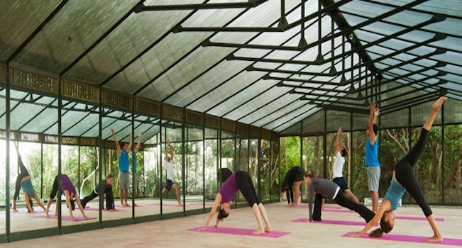 green house yoga slider